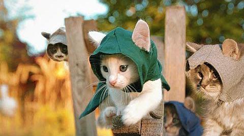 [Fun Video] Assassin's Kittens! (Assasin's Creed: SyndiCAT)